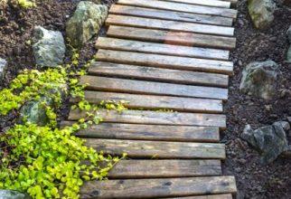 5PF - Pallet Wood Walkway