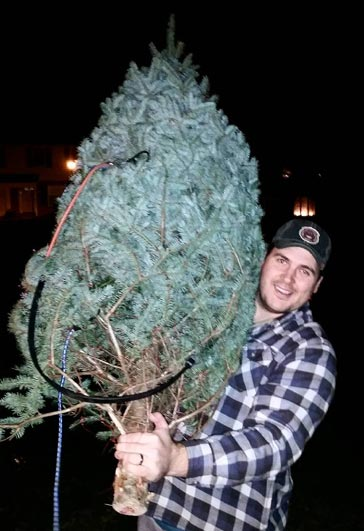 Andrew carrying a christmas tree